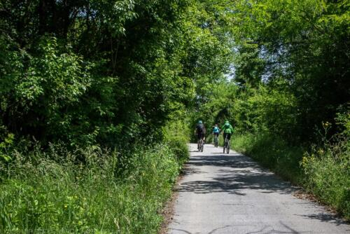 route lipnitsa lipnitsa-elov-dol-1 06