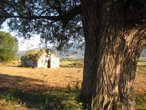 Манастир Свети Георги 7