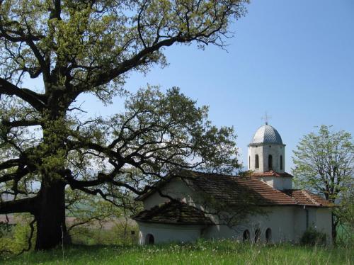 Манастир - Св. Николай 4