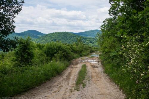 route lipnitsa lipnitsa-elov-dol-1 11
