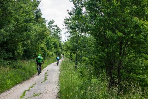 route lipnitsa lipnitsa-elov-dol-2 04