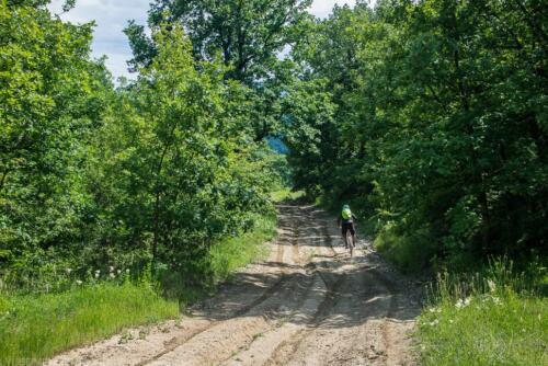 route lipnitsa lipnitsa-elov-dol-2 13